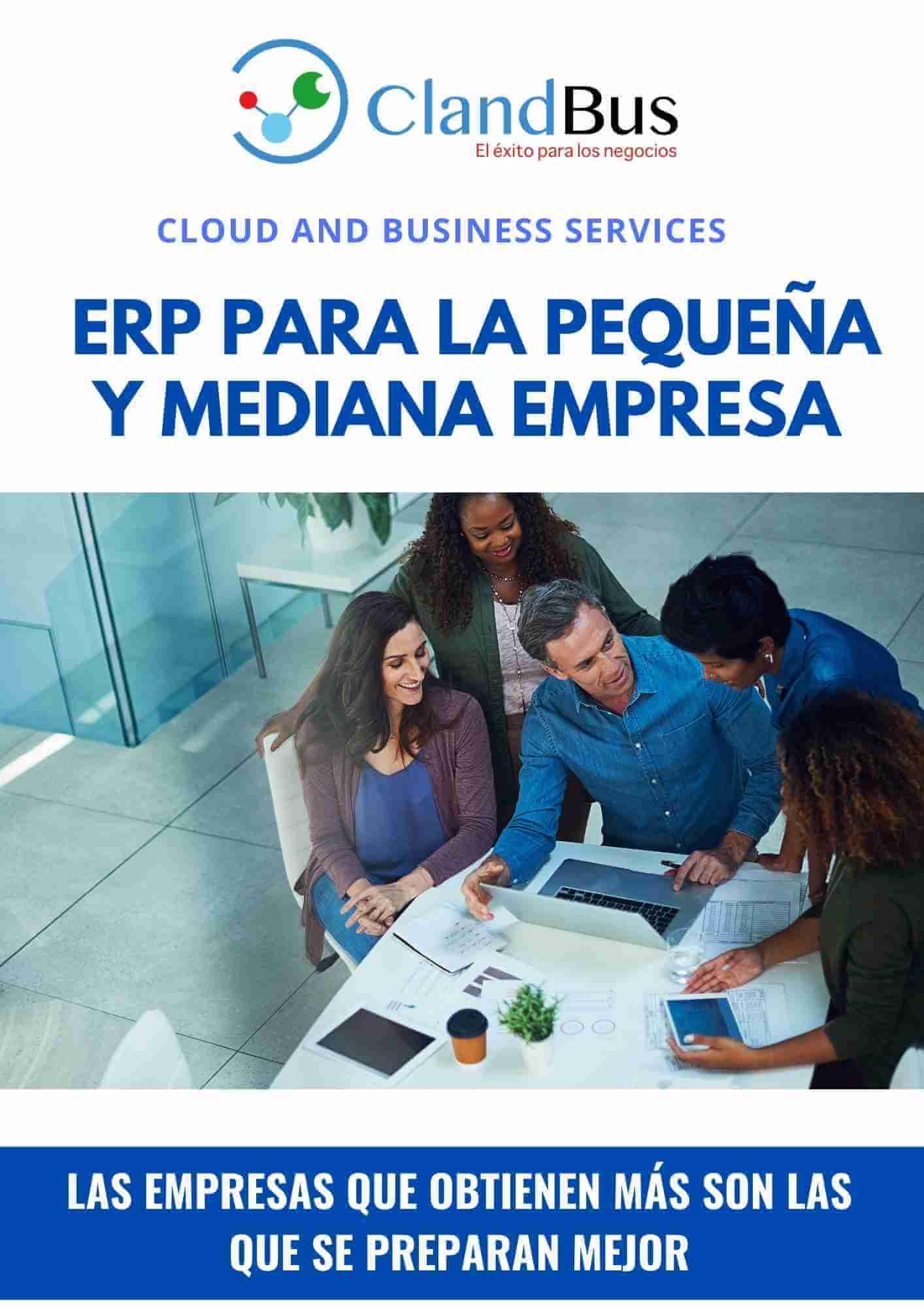 E-book ERP- ERP PARA LA PEQUEÑA Y MEDIANA EMPRESA